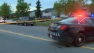 Police investigate shooting in northeast Calgary