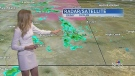 CTV Calgary: Cloudy, cool and possibly stormy!