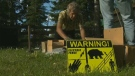 Electic fence to prevent bears from eating chicken