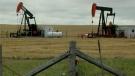 oil-land