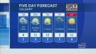 CTV Calgary: Foggy and cloudy in Calgary