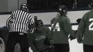 hockey-policy-3